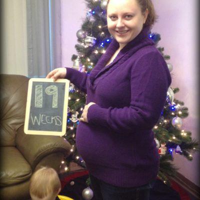 Baby Deuce: 19 Week Update