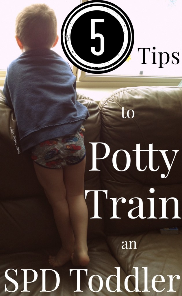 5 Tips to Potty Train an SPD Toddler