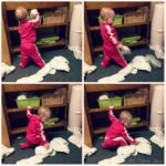 (Kinda) Wordless Wednesday: Mischievous Baby Jo