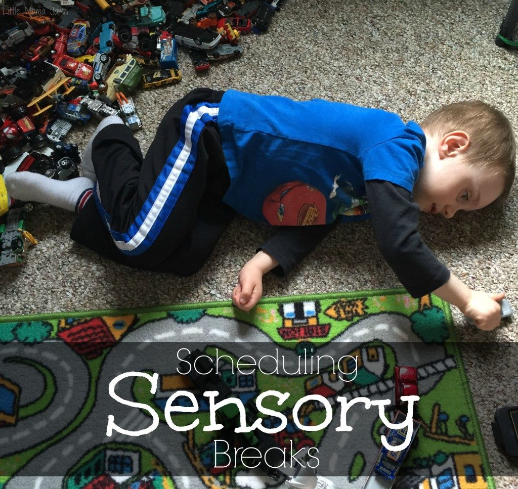 Scheduling Sensory Breaks