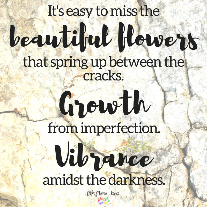 It's easy to miss the beautiful flowers that spring up between the cracks. Growth from imperfection. Vibrance amidst the darkness.